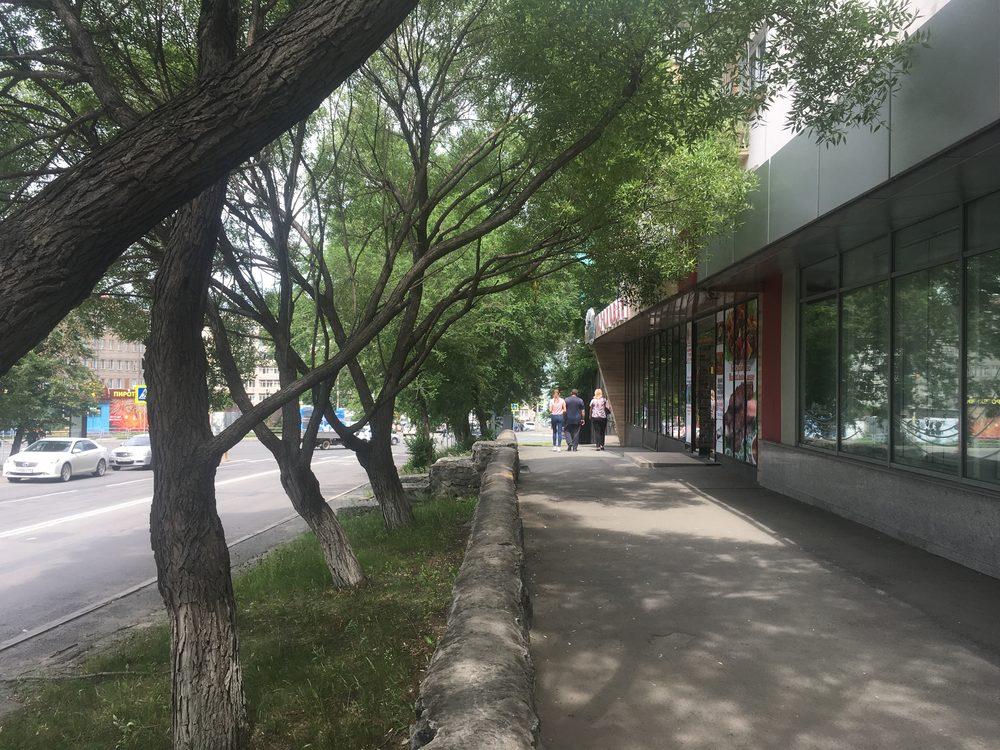 улица Елькина 59